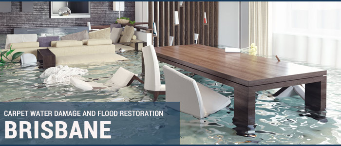 Carpet Water Damage and Flood Restoration Brisbane
