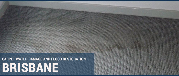 Carpet Water Damage and Flood Restoration Dutton Park