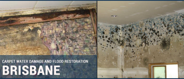 Carpet Water Damage and Flood Restoration Moombra