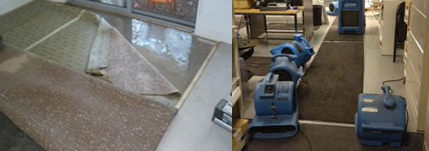 Flood Water Damage Restoration Hunchy