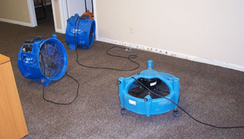 Carpet Water Damage and Food Restoration